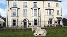 Meadowsweet Hotel & self catering apartments.
